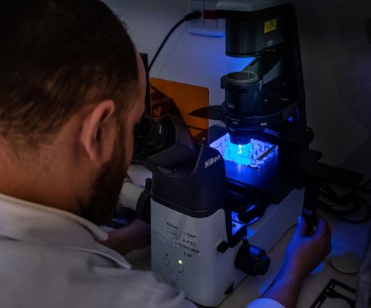 img-microscopia-iep-barretos